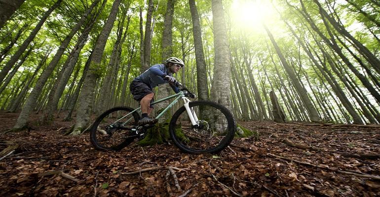 best-mountain-biking-banner