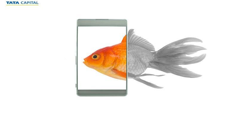 amoled-display-smartphones-banner