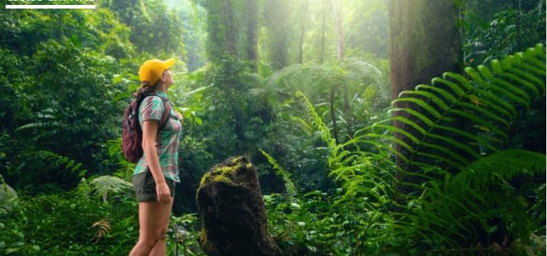 What is Ecotourism and Why is it Important