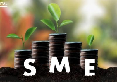 What would be the role of SMEs in India